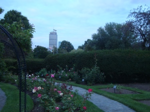 A view from the garden